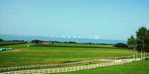 北海道八雲町のレストランハーベスター八雲トップ画像